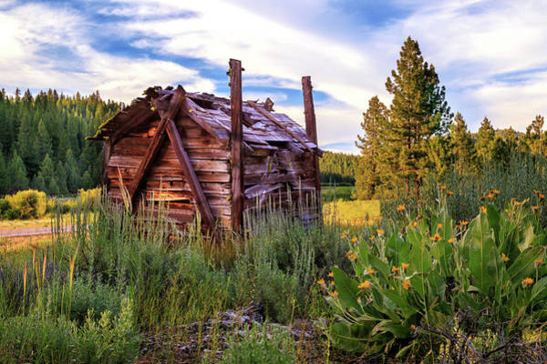 Photograph - Old Lumber Mill Cabin by James Eddy