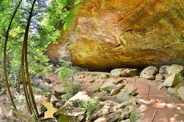 Photograph - Old Man's Gorge Hocking Hills Ohio by Lisa Wooten