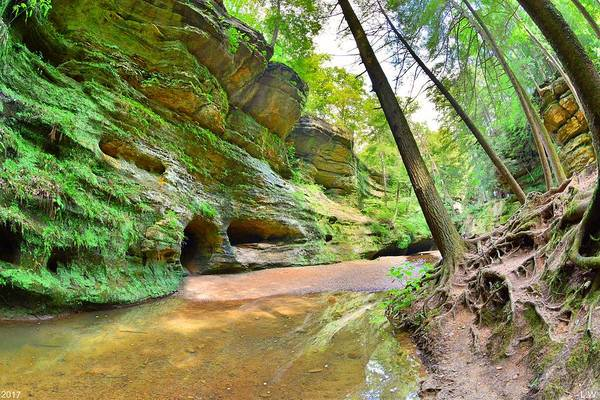 Photograph - Old Man's Gorge Trail And Caves Hocking Hills Ohio by Lisa Wooten