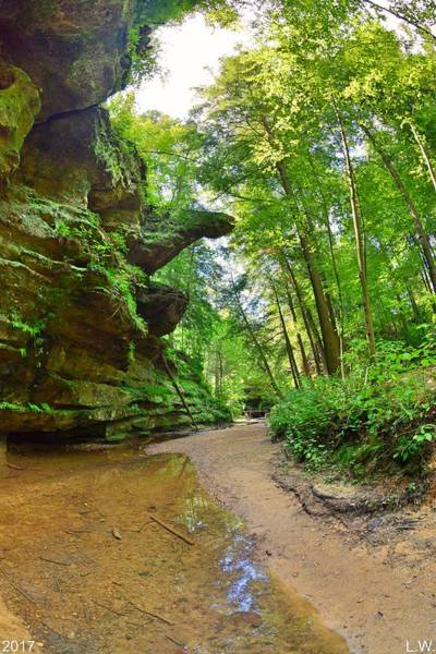 Photograph - Old Man's Gorge Trail Hocking Hill Ohio by Lisa Wooten
