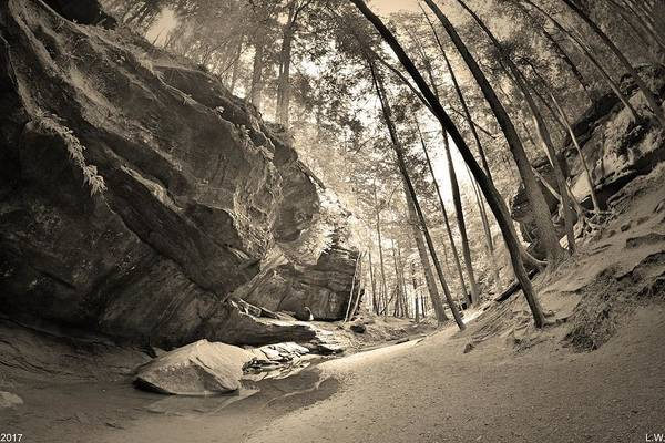 Photograph - Old Man's Gorge Trail Hocking Hills Ohio 2 Black And White by Lisa Wooten