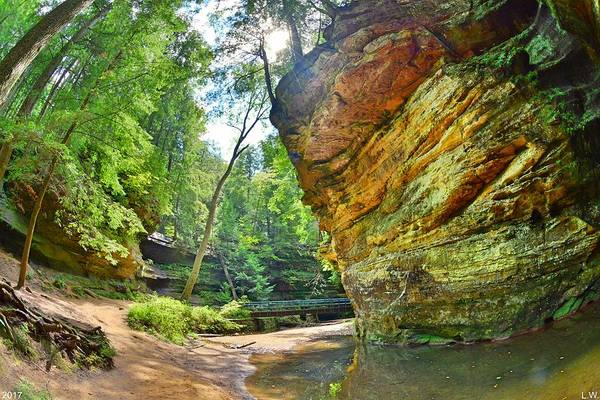 Photograph - Old Man's Gorge Trail Hocking Hills Ohio by Lisa Wooten