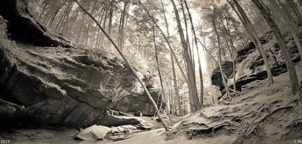 Photograph - Old Man's Gorge Trail Panorama Black And White by Lisa Wooten