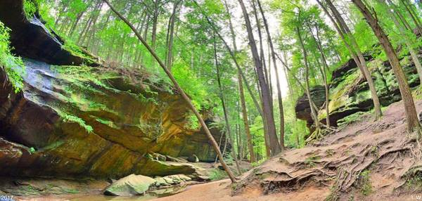Photograph - Old Man's Gorge Trail Panorama  by Lisa Wooten
