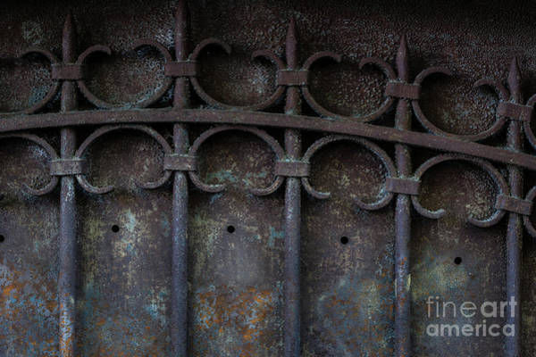 Photograph - Old Metal Gate by Elena Elisseeva