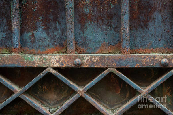 Wall Art - Photograph - Old Metal Gate Detail by Elena Elisseeva
