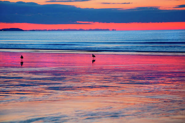Photograph - Old Orchard Beach Sunrise by Joann Vitali