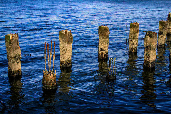 Photograph - Old Pier Pillars 1 by Bonnie Follett