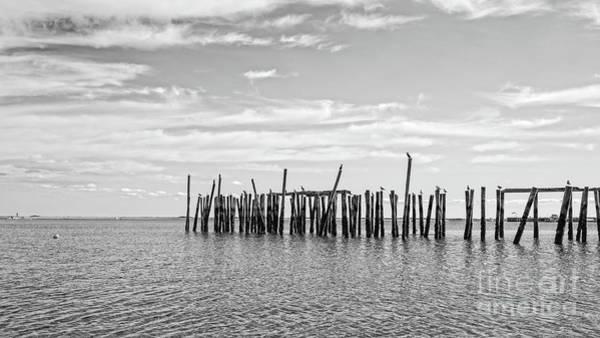 Provincetown Harbor Photograph - Old Pier Provincetown Harbor Cape Cod by Edward Fielding