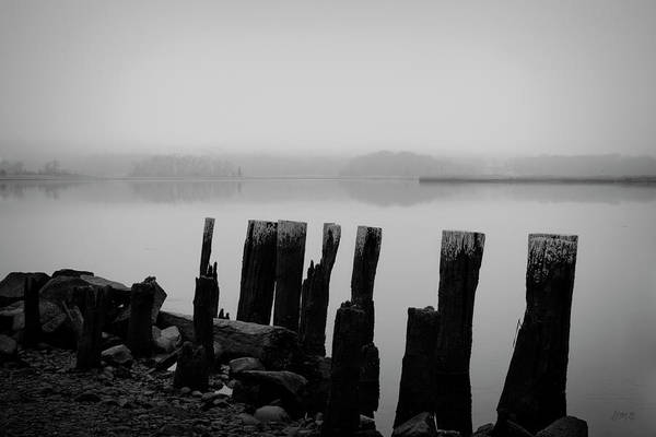 Photograph - Old Pilings - Broad Cove Inlet by Dave Gordon