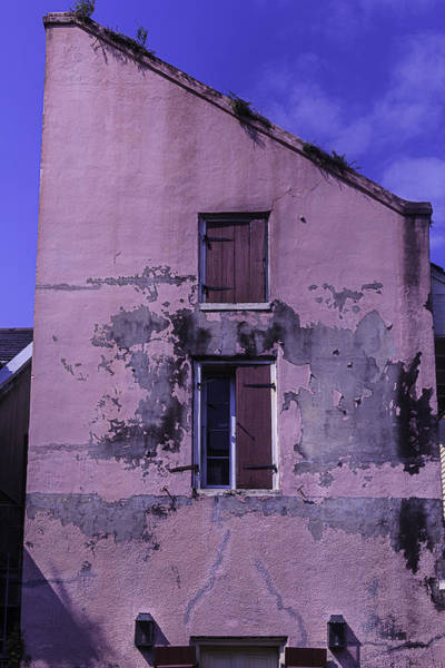 Nola Photograph - Old Pink Building by Garry Gay