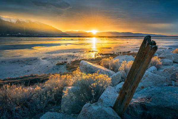 Salt Water Photograph - Old Post At The Great Salt Lake by James Udall
