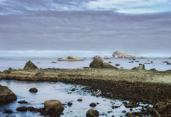 Wall Art - Photograph - Old Quarry And Castle Island by Betty Depee