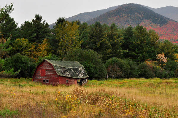 Photograph - Old Red Barn In The Adirondacks by Nancy De Flon