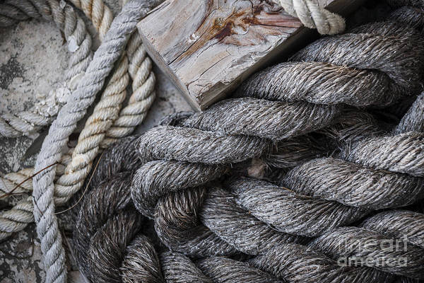 Wall Art - Photograph - Old Ropes On Dock by Elena Elisseeva