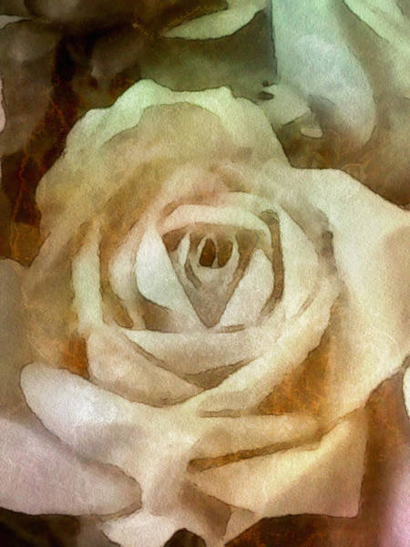 Mixed Media - Old Rose by Susan Maxwell Schmidt