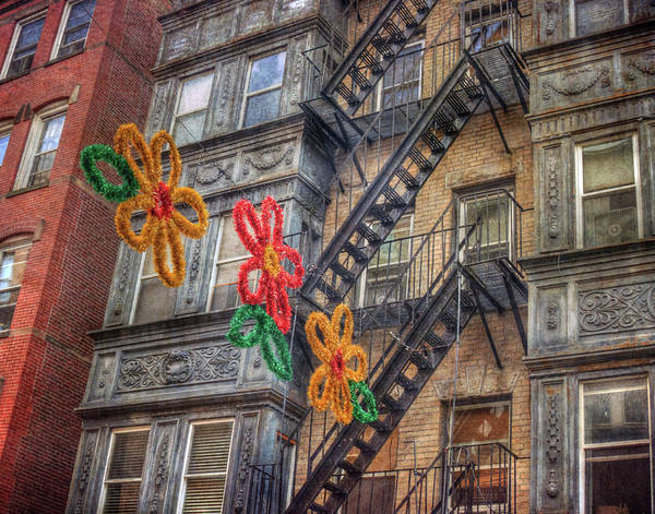 Photograph - Old Row Houses - North End - Boston by Joann Vitali