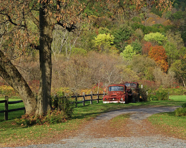 Photograph - Old Rusted Trucks Bethel Vermont Vt New England Foliage Aurumn by Toby McGuire