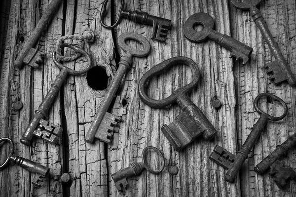 Skeleton Key Photograph - Old Rusty Skeleton Keys by Garry Gay