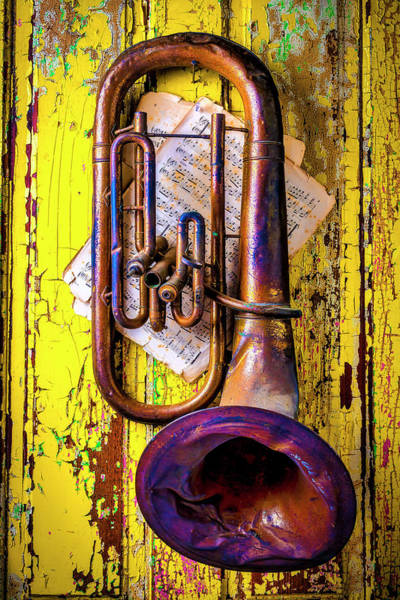 Wall Art - Photograph - Old Rusty Tuba Still Life by Garry Gay