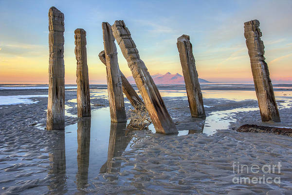 Photograph - Old Saltair Posts by Spencer Baugh