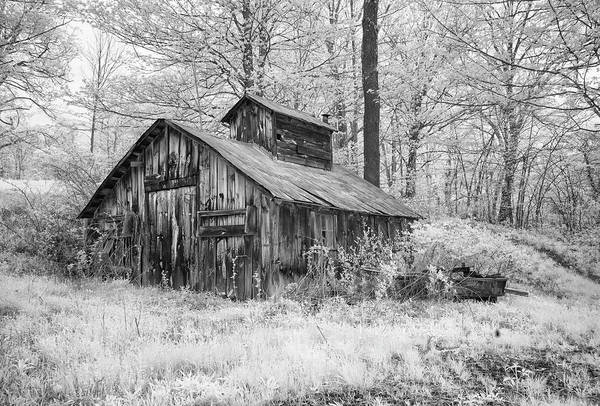 Photograph - Old Sap House In Infrared by Gordon Ripley