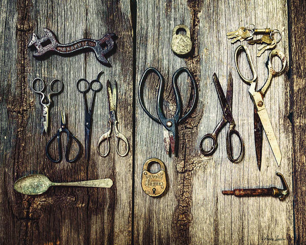 Photograph - Old Scissors And Stuff by Anna Louise