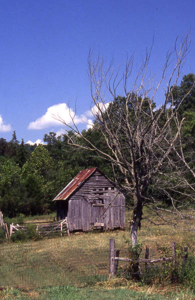 Photograph - Old Shack by Curtis J Neeley Jr