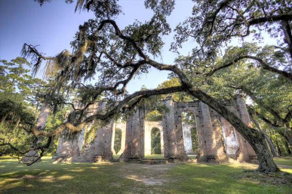 Photograph - Old Sheldon Church by Dustin K Ryan