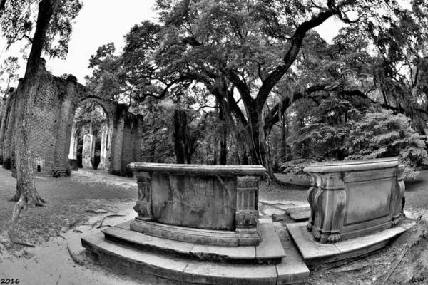 Photograph - Old Sheldon Church Ruins Beaufort Sc Black And White by Lisa Wooten