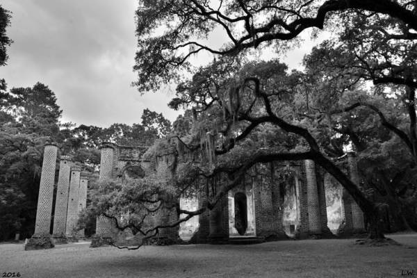 Photograph - Old Sheldon Church Ruins Black And White 3 by Lisa Wooten