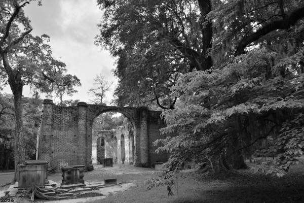 Photograph - Old Sheldon Church Ruins Black And White 4 by Lisa Wooten