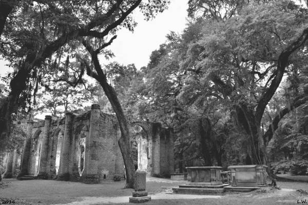 Photograph - Old Sheldon Church Ruins Black And White by Lisa Wooten