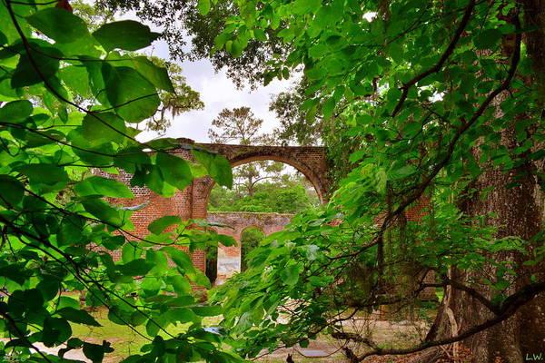 Photograph - Old Sheldon Church Ruins Peek A Boo View by Lisa Wooten