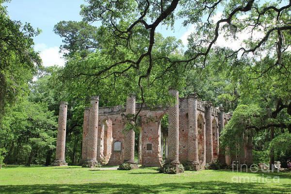 Photograph - Old Sheldon Church Ruins With Columns by Carol Groenen