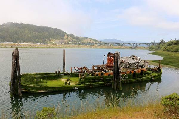 Photograph - Old Ship  by Christy Pooschke