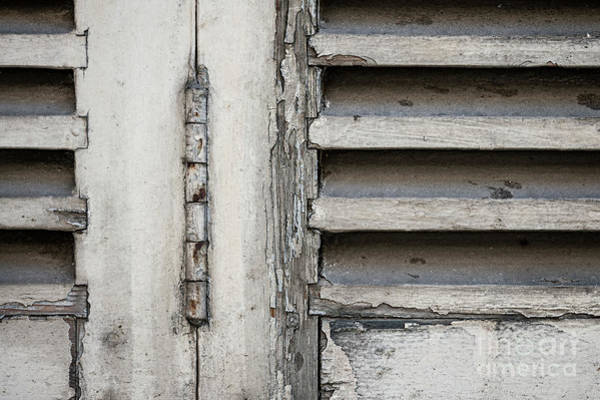 Shutter Photograph - Old Shutters by Elena Elisseeva