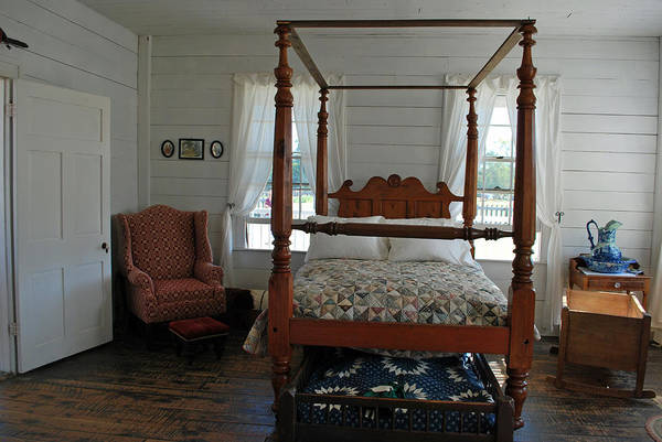 Photograph - Old Sleeper by Teresa Blanton