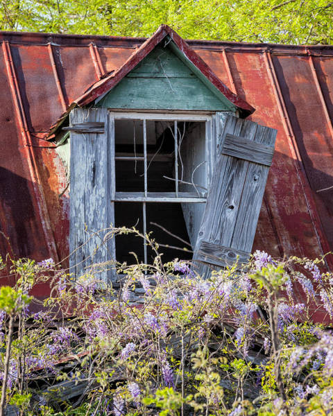 Photograph - Old South Window #2 by Denise Bush