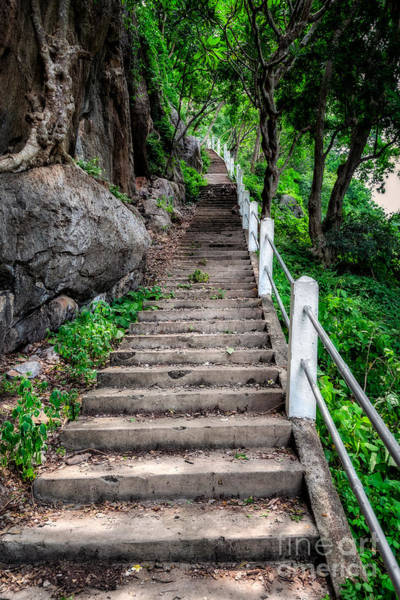 Photograph - Old Steps by Adrian Evans