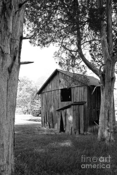 Photograph - Old Structures by Todd Blanchard