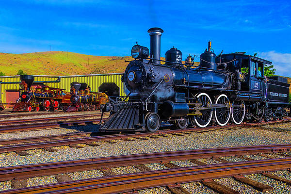 Wall Art - Photograph - Old Trains On Display by Garry Gay