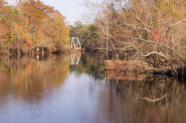 Photograph - Old Trestle On The Waccamaw River by MM Anderson