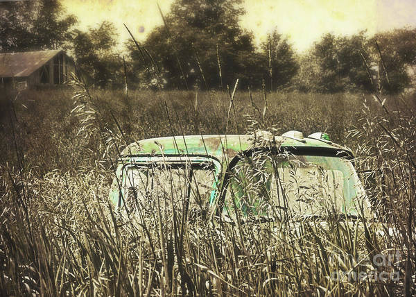 Photograph - Old Truck In The Farm Field by Hal Halli