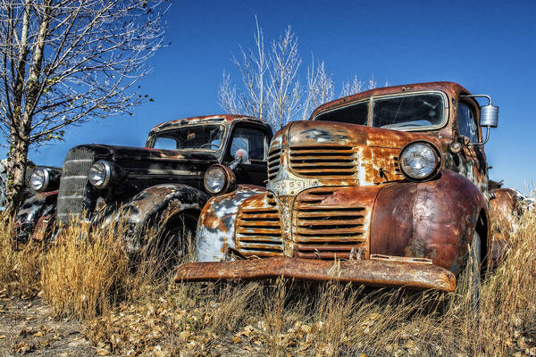 Photograph - Old Trucks by Scott Read