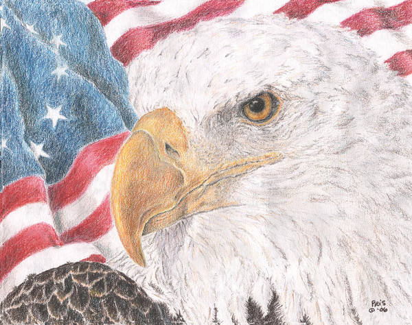 Bald Eagles Drawing - Old Values by Pris Hardy