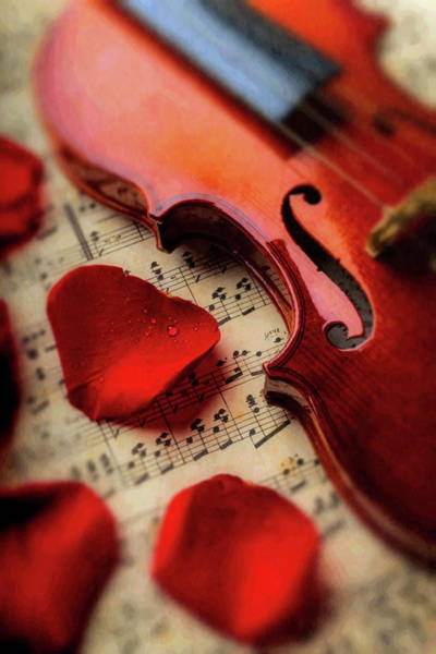 Sheet Music Photograph - Old Violin And Rose Petals by Garry Gay