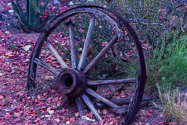 Wall Art - Photograph - Old Wagon Wheel With Lizard by Garry Gay