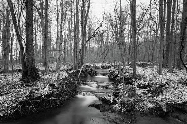 Photograph - Old Winter Creek by Michael Scott