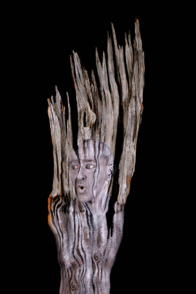 Bodypaint Wall Art - Painting - Old Wood by Johannes Stoetter